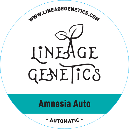 Lineage Genetics Amenesia Auto icon