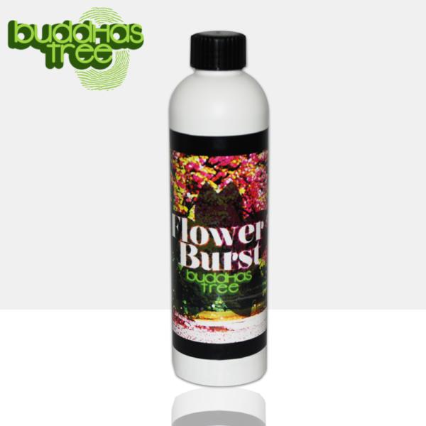 Flower Burst Buddahs Tree Nutrient